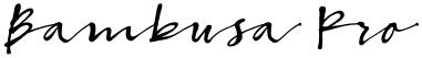 Bambusa Pro font