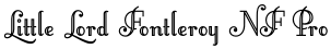 Little Lord Fontleroy NF Pro font